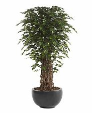 Artificial 7ft / 210cm Ficus Benjamina Liana Tree Large Office Plants DAMAGED