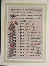 1914 stampa ~ illuminante PIASTRA dal Book of Kells ~ la genealogia di Cristo