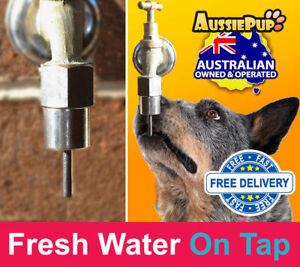 Dog Kennel Drinker Tap. Self Feeder Self Waterer Hands free dog bowl no mess