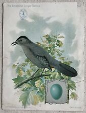 1899 Victorian Trade Card Singer Manufacture Co Sewing Stocking Darner; CAT BIRD