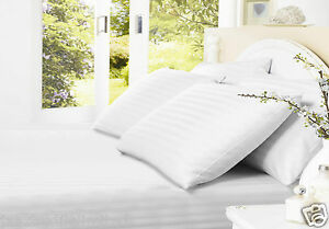 White With Stripe 100% Egyptian Cotton 250 Thread Hotel Style Fitted Bed Sheets.