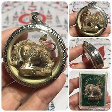 Pig Takrut Yantra Thai Buddha Amulet. Luck Rich Success Wealth Protect B.E.2559