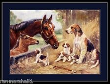 English Print Fox Hound foxhound pointer Dog Puppies Horse Art Poster Picture