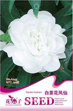 1 Pack 20 Garden Balsam Seeds Impatiens Balsamina White Impatiens Flowers A243