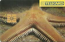 RARE / CARTE TELEPHONIQUE : ETOILE DE MER / POISSON EXOTIQUE - FAUNE SOUS MARINE