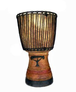 Profi Djembe Kambala Hartholz Hardwood Trommel Elfenbeinküste Ivorycoast No11701