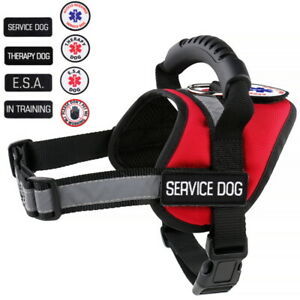 Service Dog - Therapy Dog - Support Dog Vest Patches Harness ALL ACCESS CANINE™