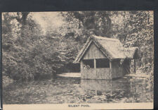 Surrey Postcard - The Silent Pool, Albury  RS19093
