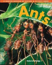 Ants (Denver Museum Insect Books) by Hodge, Deborah