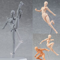 Male Female PVC Movable Action Figma Figure Body Doll Anime Drawing Model Toy