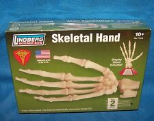Lindberg  Science Kits Skeletal Hand No.71313