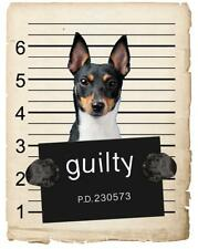 Toy Fox Terrier Mugshot Bad Dog Fridge refrigerator Car Magnet