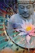 BUDDHA - LIVING RADIANCE POSTER - 22x34 - INSPIRATIONAL 14282