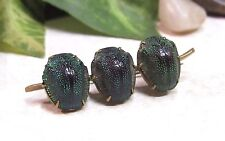 Antique Victorian Egyptian Revival Real Scarab Jewel Beetle Pin Brooch