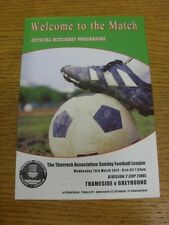 26/03/2014 Thurrock Sunday League Division 2 Cup Final: Thameside v Greyhound [A