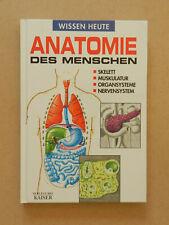Anatomie des Menschen Wissen heute auf einem Blick