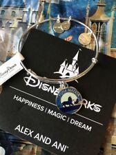 Silver Lion King Hakuna Matata Alex and Ani Disney Charm Bracelet