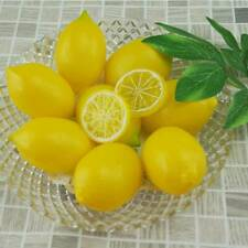 Pack of 20 Lifelike Artificial Faux Lemon Fake Fruit Miniature Crafts Decoration