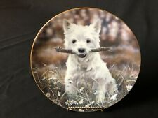 """Danbury Mint """"Let's Play!� West Highland Terriers By Paul Doyle 8&1/8�Plate"""