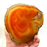 Orange Agate Slice Extra Large Banded Geode Slice 16cm x 15.5cm Polished
