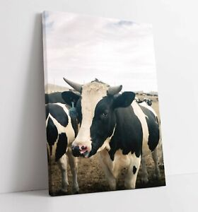 COW LARGE CANVAS WALL ART FLOAT EFFECT/FRAME/PICTURE/POSTER PRINT- BLACK WHITE