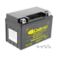 AGM Battery for Honda NSS250 NSS250A NSS250S NSS250As Reflex 250 Abs 2001-2007