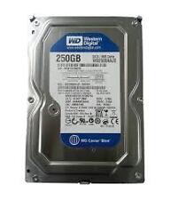 """250 GB SATA HDD INTERNAL DESKTOP HARD DISK DRIVE  3.5"""" (SEAGATE / W.D.)"""
