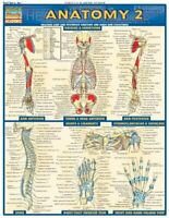 Anatomy 2 - Reference Guide (8.5 x 11) (Qu... by Vincent Perez Other book format