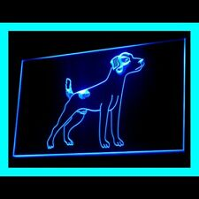 210190 Jack Russell Terrier Pet Shop Outlet Fast Pet Supplies Led Light Sign