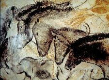 Amazing Dappled Print Horse Pony Cave Art Equestrian Painting Poster Archaeology