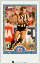 1996 Tip Top Hyfibe AFL Heroes Card #35 Craig Kelly (Collingwood)