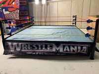 WWE Authentic Scale Ring Wicked Cool Toys for WWE figures RARE READ DESCRIPTION