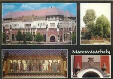 Romania Marosvasarhely Targu Mures city crest mosaic painting culture palace