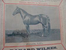 Poster: 1892 Original Glenarm Horse Poster C.P. Drake Lesiston Maine double side
