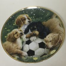 Franklin Mint Soccer Scamps James Killen Plate Puppies Dogs Aspca 8� Gold Rimmed