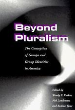 Beyond Pluralism: The Conception of Groups and Group Identities in America