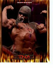 SCOTT STEINER TNA IMPACT WRESTLING ORIGINAL 8x10 PROMO UNSIGNED VERY RARE! FIRE