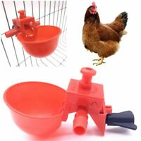 Hen Red Poultry Chicken Water Cup Automatic Feeder Cage Feed Drinker Bowl