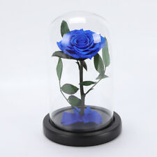 Enchanted Forever Rose Flower In Glass Wedding Festival Home Decor