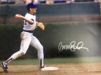 Ryne Sandberg Signed Autographed 16x20 Photo Picture Cubs HOF COA