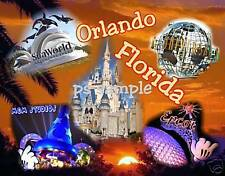 Florida - ORLANDO (Collage) - Souvenir Fridge Magnet