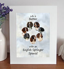 "English Springer Spaniel 'Life is Better' 10""x8"" Mounted Picture Print Fun Gift"