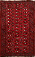 2x4 ft Geometric Bokhara Oriental Area Rug Hand-Knotted Wool Traditional Carpet