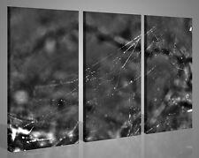 Quadri moderni canvas IL REGNO DEL RAGNO VOL II stampe su tela intelaiate 130x90