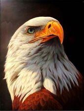 Beautiful modern art Eagle decorative oil painting No Frame