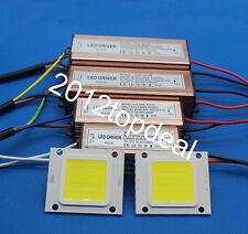 REAL WATT chip-on-board HIGH POWER 10W 20W 30W 50W 220V 110V Lampada a LED lampada Chip integrato