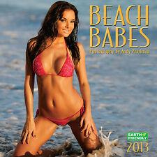 NEW - Beach Babes 2013 Swimsuit Calendar Hillary Fisher
