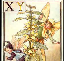 "Fairy Alphabet ""X Y"" Yellow Nettle,Cmb,Barker Postcard"