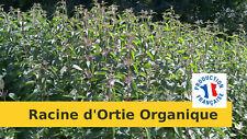 Racine d'Ortie Organique du Bourbonnais - 300 Grs - Récolte 2020