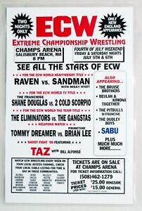Laminated 1996 ECW Extreme Championship Wrestling Event Poster Raven Sandman